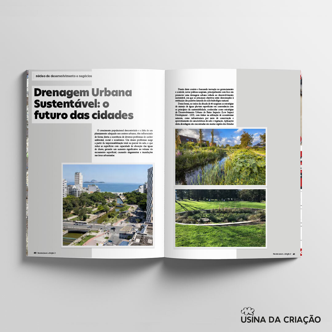 Revista Ipsum 3ª Edição - Sinduscon-Sul